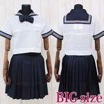 私立女子学園中学校・高等学校のセーラー服(夏服)BIG(衣装・コスチューム)